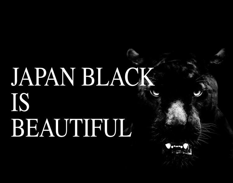 """黒いステンレス材""""アベルブラック"""""""